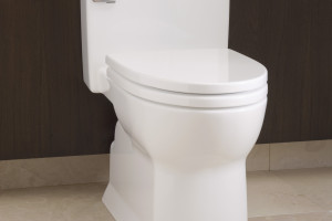 https://theplumbingplace.com/wp-content/uploads/2015/03/Soiree-toilet-300x200.jpg