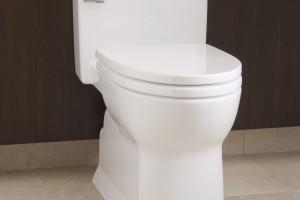 http://theplumbingplace.com/wp-content/uploads/2015/03/Soiree-toilet-300x200.jpg